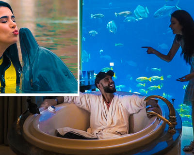 Expensive Tastes: Swimming With Dolphins, Sleeping With Fishes