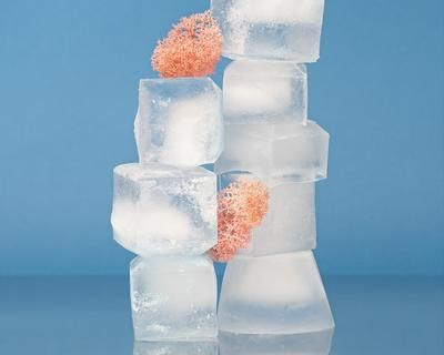 Have we been filling ice cube trays wrong all this time?
